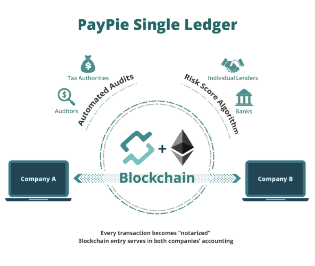 paypie single ledger